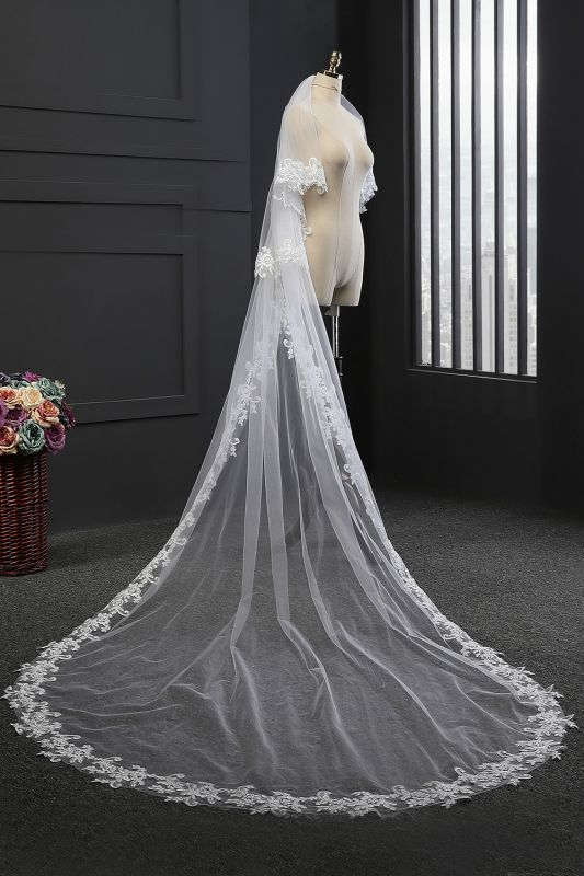 Elegant Tulle lace Applique Edge 3*1.5M Wedding Gloves