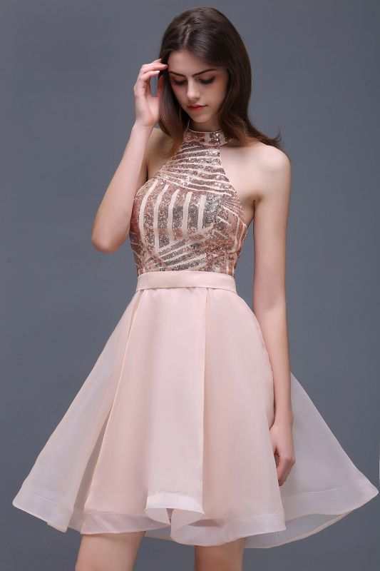 ALAYAH | A Line Halter Organza Short Homecoming Dresses With Sequins