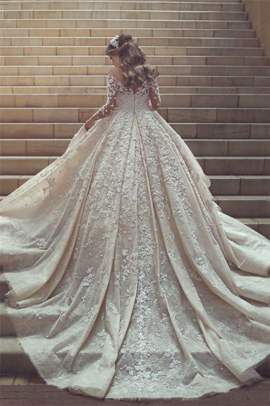 See Through Tulle Appliques Ivory Wedding Dresses | Long Sleeve Bridal Gowns with Cathedral Train