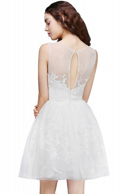 ALEXANDRIA | A Line Sheer Whit Short Tulle Cocktail Dresses With Lace_6
