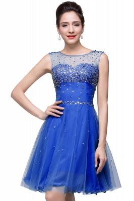 Sleeveless Open-Back Short Crystal Homecoming Dresses_5