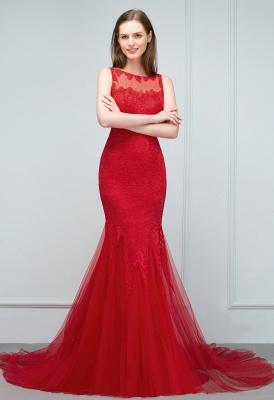 VANESSA | Mermaid Floor Length Illusion Neckline Sleeveless Tulle Lace Prom Dresses_5