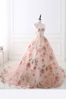 ALIA   Ball Gown Sweetheart Vintage Organza Evening Dresses With Print_9