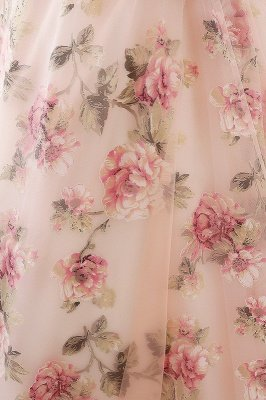 Vintage Sheer Champagne Print Flowers A Line Long Evening Dresses
