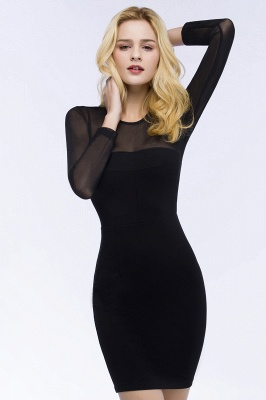 ROBERTA | Sheath Long Sleeves Sheer Neckline Plus Size Short Black Homecoming Dresses_5