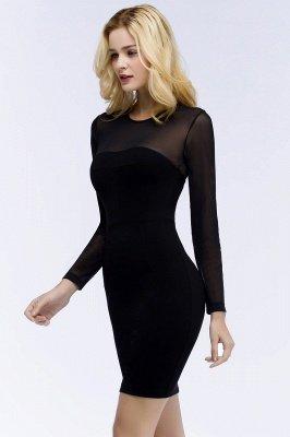 ROBERTA | Sheath Long Sleeves Sheer Neckline Plus Size Short Black Homecoming Dresses_8