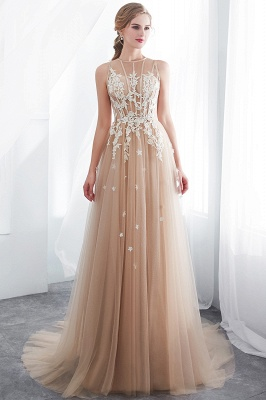 NANNIE | Aline Floor Length Sleeveless Appliqued Tulle Evening Dresses_7