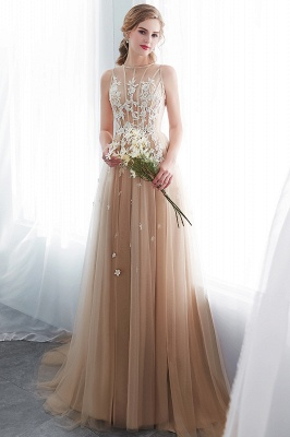 NANNIE | Aline Floor Length Sleeveless Appliqued Tulle Evening Dresses_4