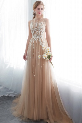NANNIE | Aline Floor Length Sleeveless Appliqued Tulle Evening Dresses_6