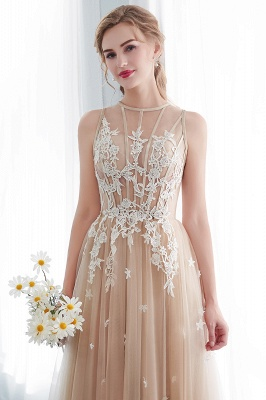 NANNIE | Aline Floor Length Sleeveless Appliqued Tulle Evening Dresses_10