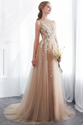 NANNIE | Aline Floor Length Sleeveless Appliqued Tulle Evening Dresses_5