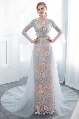 NAOMI | Sheath Long Sleeves Sheer Neckline Appliqued Flowers Evening Dresses