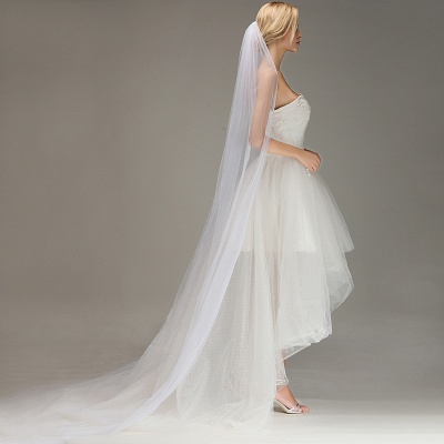 One Layer Cathedral Wedding Veil with Comb Tulle Lace Edge Bridal Veil_4