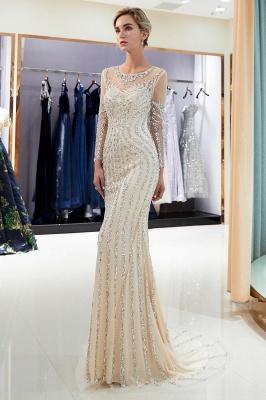 Mermaid Long Sleeves Sequined Pattern Evening Dresses_15