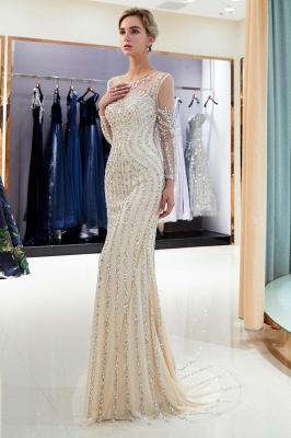 Mermaid Long Sleeves Sequined Pattern Evening Dresses_11