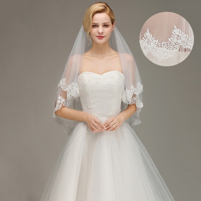 Elegant Two Layers Lace Edge Wedding Veil Appliques Long Bridal Veil_3