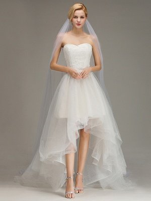 One Layer Cathedral Wedding Veil with Comb Tulle Lace Edge Bridal Veil_1
