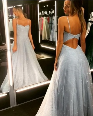 Sparkly Backless Dress Tulle Floor Length Prom Dresses | Cheap Long Evening Gowns on Sale_1