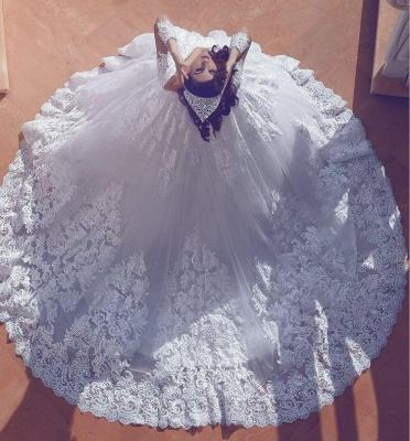 Popular V-neck New Arrival Lace Long Sleeve Cheap Online Court Train Elegant Ball Gown Wedding Dresses_3