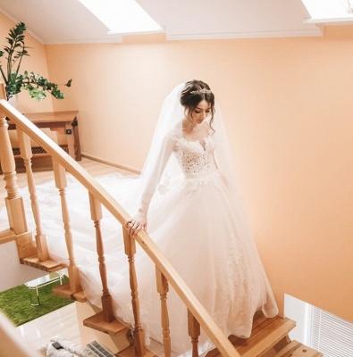Elegant Lace V-Neck Appliques Sleeveless Wedding Dresses_6