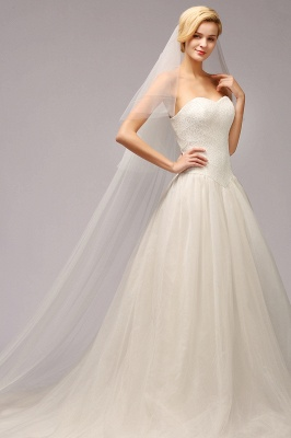 Excellent Lace Tulle Cathedral Wedding Veils | Bridal Veils_1