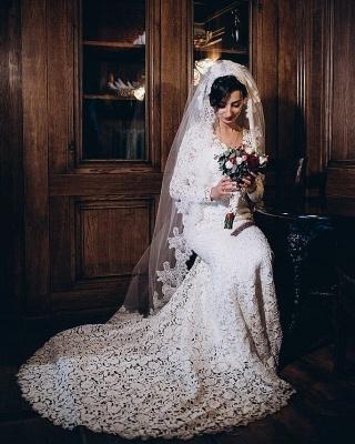 Tulle Lace Long-Sleeves V-Neck Long Mermaid Wedding Dress