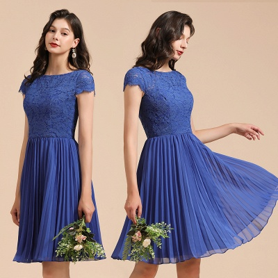 Stylish Floral Lace Short Sleeves Aline Party Dress Mini Daily Casual Dress_10