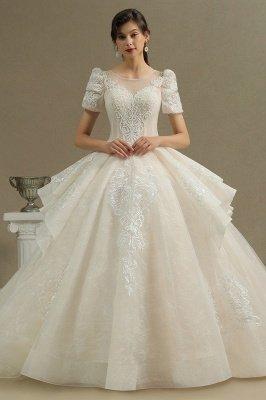 Elegantes Kurzarm Princess Ballkleid ALine Lace Appliques Brautkleid_1