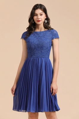 Stylish Floral Lace Short Sleeves Aline Party Dress Mini Daily Casual Dress_9