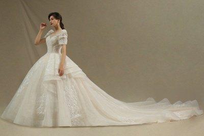 Elegant Short Sleeve Princess Ball Gown ALine Lace Appliques Wedding Dress_3