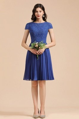 Stylish Floral Lace Short Sleeves Aline Party Dress Mini Daily Casual Dress_6