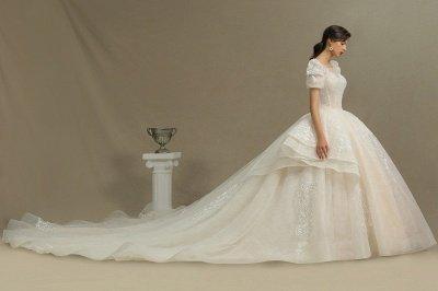 Elegant Short Sleeve Princess Ball Gown ALine Lace Appliques Wedding Dress_4