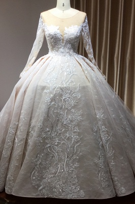 Glamorous Floral Lace Ball Gown Long Sleeves Aline Bridal Dress for Girls Women_1