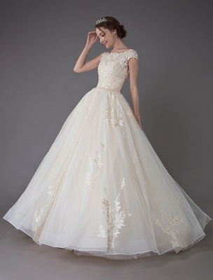 Wedding Dresses Princess Ball Gowns Champagne Lace Applique Beaded Colored Maxi Bridal Dress_4