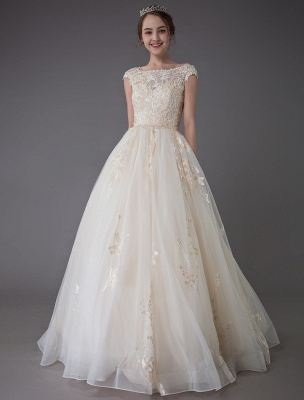 Wedding Dresses Princess Ball Gowns Champagne Lace Applique Beaded Colored Maxi Bridal Dress_3