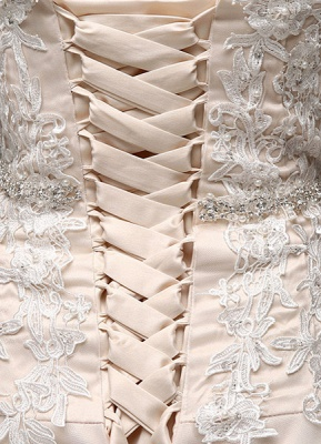 Wedding Dresses Champagne Tulle Strapless Sweatheart Lace Sash Bridal Gown_6