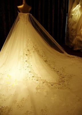 Brautkleider Spitze Applique Brautkleid Trägerlos Schatz-Ausschnitt Perlen Kathedrale Zug Brautkleid_4