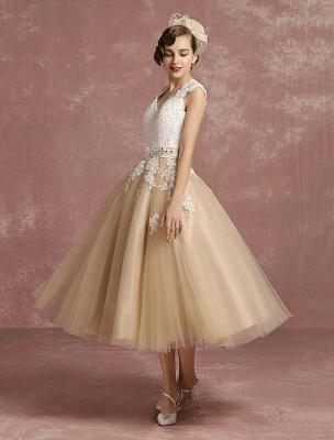 Vestido de novia de la vendimia Vestido de novia corto con apliques de encaje de champán Vestido de novia con cuello de la reina Ana Vestido de novia de la longitud del té_3