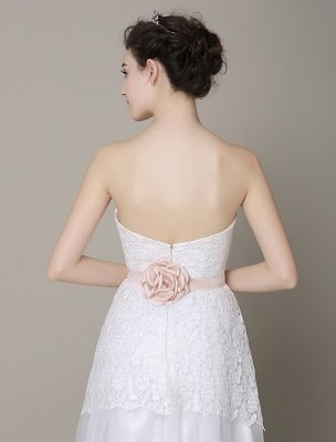 Ivory-Wedding-Dress-Strapless-Backless-Sash-Tulle-Wedding-Gown-Exclusive_8