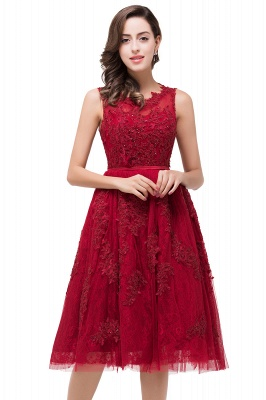 ADELINE | A-line Short Tulle Evening Dress with Appliques_5