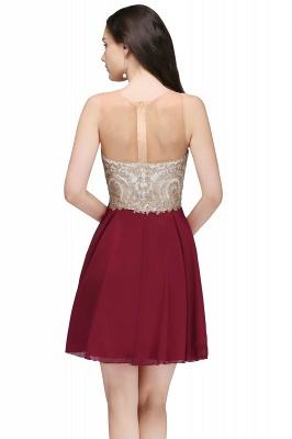 ALIANNA | Sheath Jewel Chiffon Short Homecoming Party Dresses With Applique_6