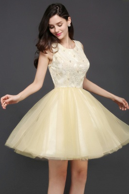 CLARA | Princess Scoop neck Knee-length Tulle Prom Dress_5