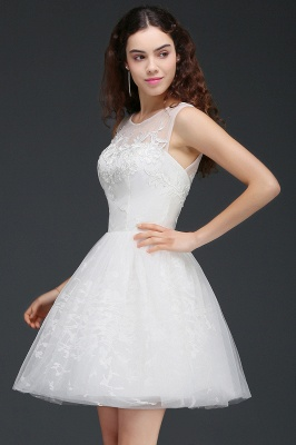ALEXANDRIA | A Line Sheer Whit Short Tulle Cocktail Dresses With Lace_3
