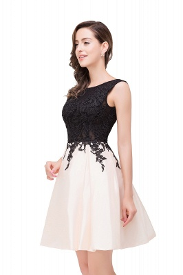 EVA | A-line Sleeveless Lace Appliques Short Prom Dresses_10