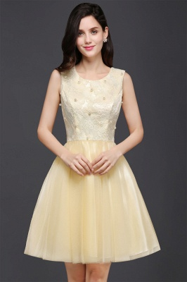 CLARA | Princess Scoop neck Knee-length Tulle Prom Dress_4