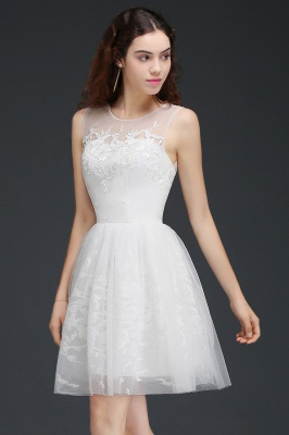ALEXANDRIA | A Line Sheer Whit Short Tulle Cocktail Dresses With Lace_2