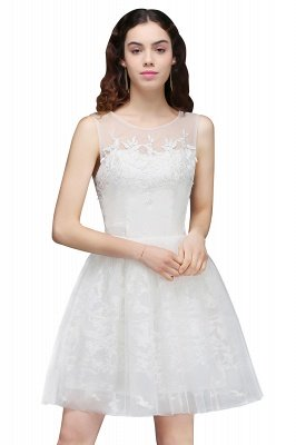 ALEXANDRIA   A Line Sheer Whit Short Tulle Cocktail Dresses With Lace_1