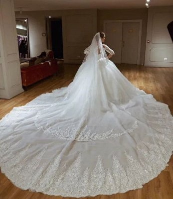 Glamorous Lace V-neck Ball Gown Wedding Dresses | Appliques Sleeves Bridal Gowns with Sweep Train_3