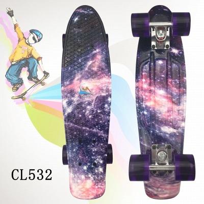 Skateboards Complete 22