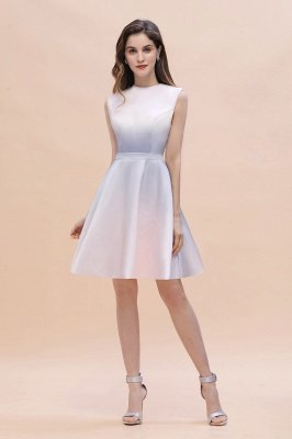 Gradient Elegant Mini Daily Wear Dress A-line Crew neck Sleveless Party Dress_2